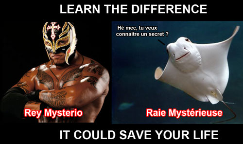Rey Mysterio Raie Mystérieuse
