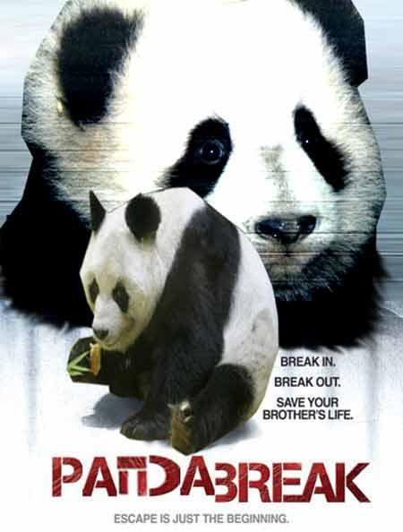 Panda Break