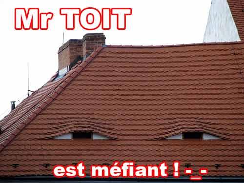 Mr toit est méfiant