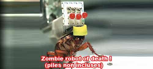 Cafard zombie