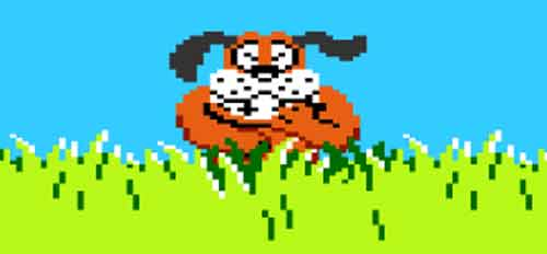 Chien duck hunt