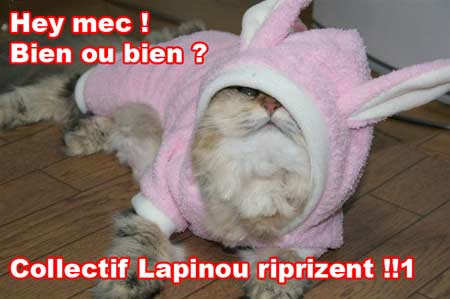 Collectif Lapinou