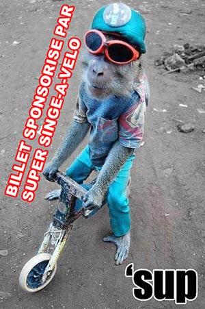 Super singe à vélo