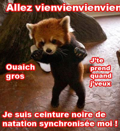 Firefox dangereux