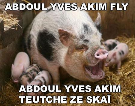 Abdoul yves akim fly