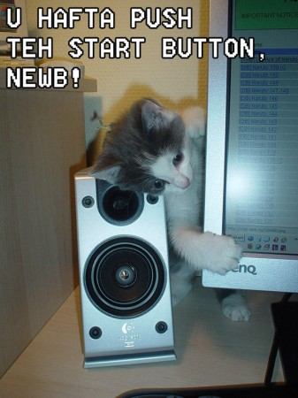 Start button kitten.jpg