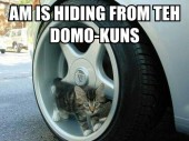 am-is-hiding-from-teh-domokuns-jack.jpg
