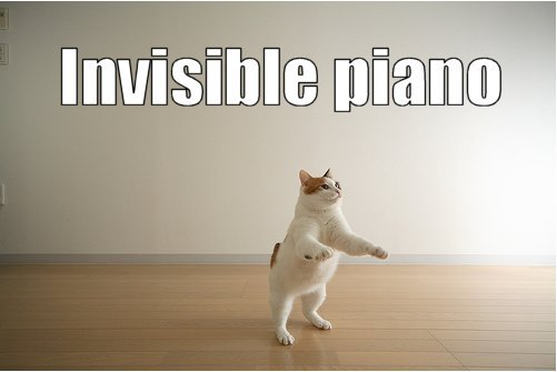 Invisible piano - Lolcat