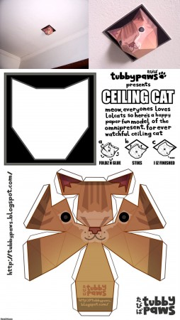 ceiling_cat_is_watching_you.jpg