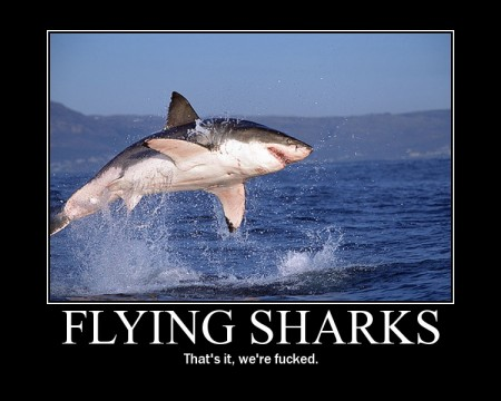 flyingshark.jpg