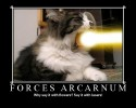 forces arcarnum.jpg