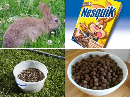rabbit-dropping-cereal.jpg