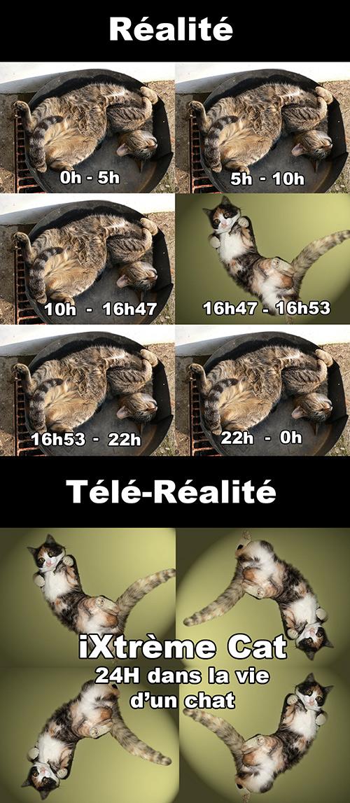 Les astuces de chacal de la télé réalité